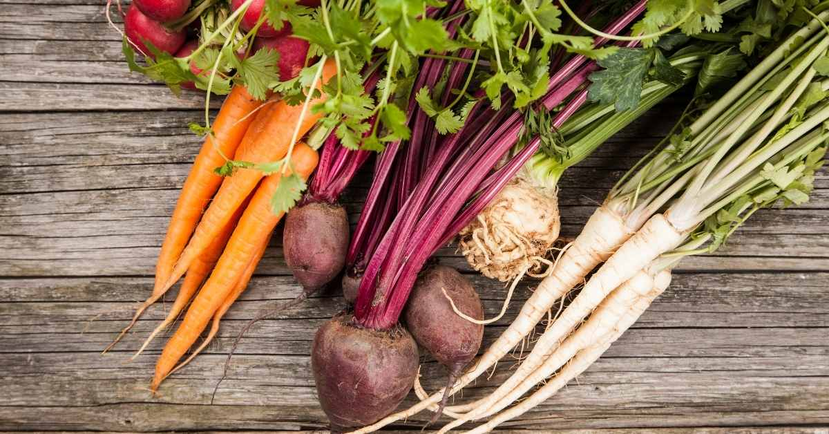 organic vegetables for juicing